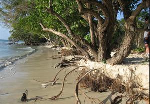 Negril-Beach-Flickr